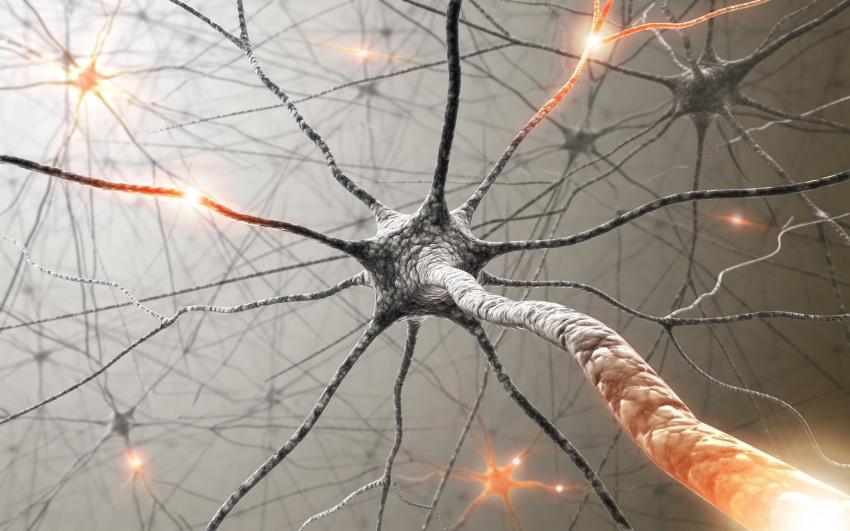Grafische weergave van zenuwcellen (iStock)